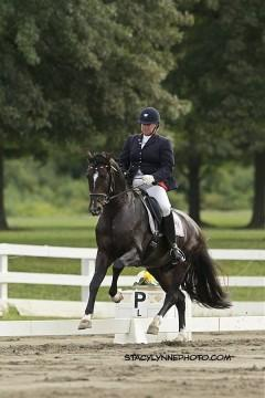 Silke and Salmantino an Oldenburg Stallion owned by Jeanne Van Nuys Hitt