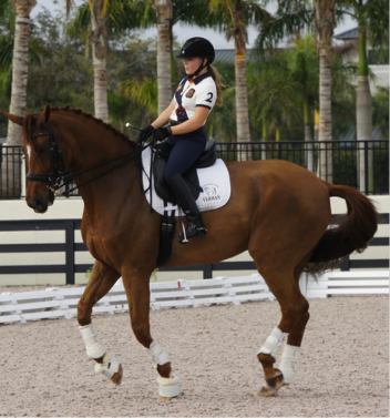 Rosie Julian Simoes and Proteus (Don Schufro x Pari Lord) an 8-year-old Danish warmblood and full brother to Paragon participating in the 2013 Emerging Dressage Athlete's and Robert Dover Horsemastership Program. Photo: Betsy LaBelle