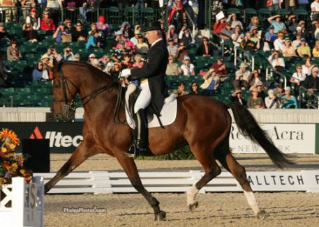 Pierre St. Jacques and Lucky Tiger return to the Rolex Arena where they rode the test rides at the Alltech FEI World Equestrian Games as the alternate for the USA Dressage Team.photo: Mary Phelps - phelpsphotos.com