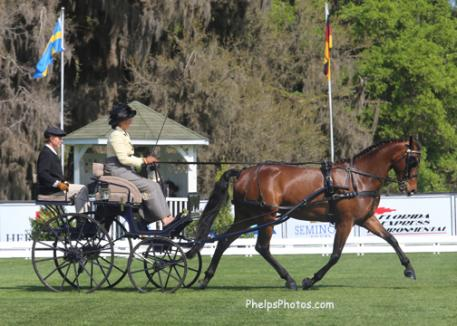 Suzy Stafford and PVF Peace of Mind take the lead in the FEI Single Horse Division of Driven Dressage