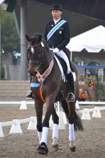 "Steffen Peters won the Grand Prix and Grand Prix Special at the Burbank CDI-W/Y/J, showing why ""Legolas""could be his next superstar. (Photo: Jennifer M. Keeler)"