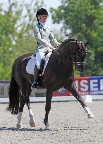 Alice Tarjan's Hanoverian stallion Somer Hit (Sandro Hit-Rhussia by Rotspon), who finished third in the 2011 Markel/USEF National Young Horse Dressage Championships, finished the six-year-old division.Photo: Mary Phelps - phelpsphotos.com