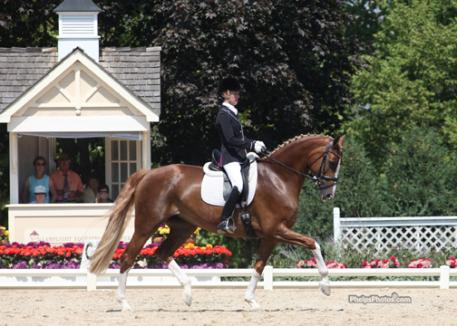 Alice Tarjan and Elfenfeuer (Florencio I-Elfensonne by Sion) Markel/USEF National Young Horse Dressage Championship for Five-Year-Olds