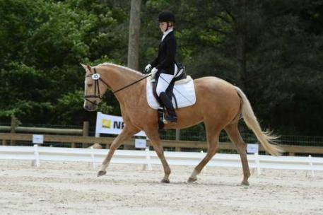 Taylor Pence and her lovely mare Goldie put in a solid ride with a score of 32.8.
