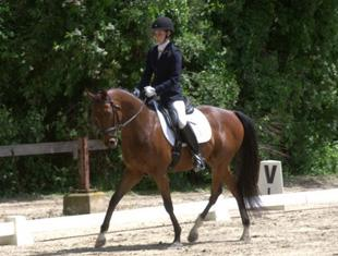 Winning at Dressage!