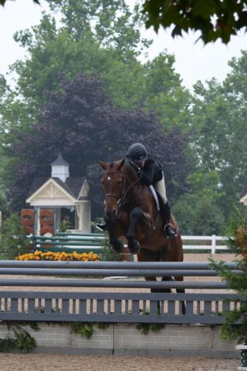Shannon Kelly's Trust Me with Tina Judge aboard won both classes in the High Performance Hunters at Equifest II. Photo By: Brenda Mueller/PMG.
