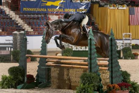 Tommi Clark and Exupery, Grand Hunter Champions at the 2012 Pennsylvania National Horse Show. Photo by Al Cook.