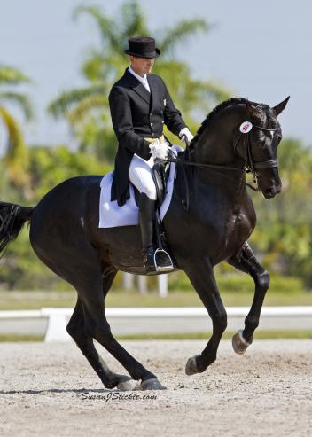 Fred Astair and Tom Noone were preparing to compete in the 2013 Dressage in Florida season. Photo: Susan J Stickle