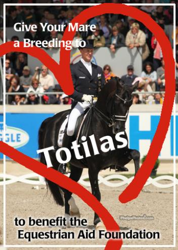 Don't miss this chance to help support Equestrian Aid and invest in a breeding to the best dressage horse of all times- Three-time World Champion, Three-time world record holder Totilas generously donated by the Totilas partnership of Paul Schockemohle and Anna Katrin Linsenhoff of Germany.