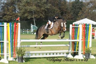 It's game on for Trent McGee and Super Mario in the jumper ring. Photo: Flying Horse Photography