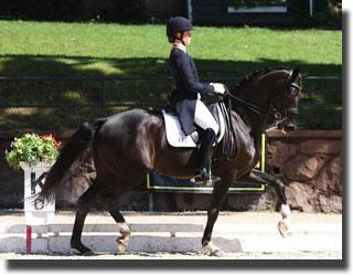 Lauren and Sagacious in the Freestyle at the 2011 Festival of Champions in Gladstone, NJ