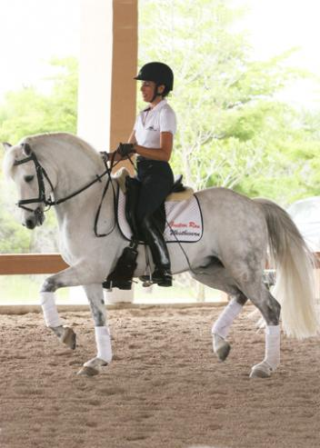 Jovanna Stepan with Tanya Murray's 14-hand Connemara pony Erin Meadows Oke Doke (by Loughrea's Oisin out of Erin Meadows Celtic Treasure x Hideaway's Sebastian) earns reserve champions in the East Coast Rider's Cup competition for Intermediate I