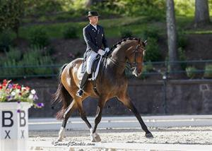 Peters and Legolas 92 at the 2014 U.S. Dressage Festival of Champions presented by The Dutta Corp (Photo: SusanJStickle.com)
