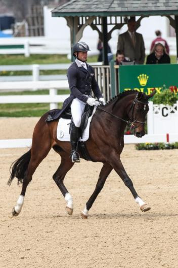 Michael Pollard and Mensa G are the early leaders of the Rolex Kentucky Three-Day Event, presented by Land Rover, scoring 49.5. (Photo: Ben Radvani)