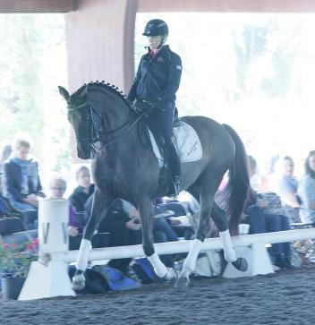 Heidi Degele riding Don Fredo HD at the 2014 USDF Trainer's Conference  Photo: Betsy LaBelle