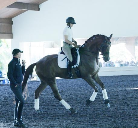 Ilse Schwarz riding Don Joseph at the 2014 USDF Trainer's Conference  Photo: Betsy LaBelle