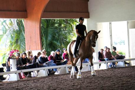 Steffen Peters shares more on Marne Martin-Tucker's eight year old mare, Royal Coeur