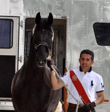 Dr. Cesar Parra leading his new Grand Prix mount, Van the Man off the trailer and onto US soil. (Photo: Laura Pradell)