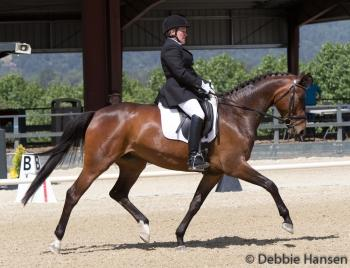 Vicky Stashuk-Matisi and Springfield get great scores and Open High Point ChampionPhoto: Debbie Hansen