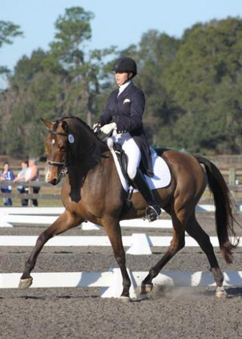 Anna Marek debuted Warina in the Prix St George, a 10-year-old KWPN mare by Sir Sinclair owned by Fran Marion at the Ocala Winter Dressage January show. Photo: Bill Wertman