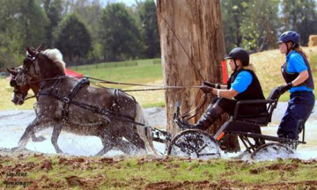 Dusty and Buddy navigated the water obstacle at the Hermitage Classic HDT with Mary Phelps and Carrie Ostrowski. (Photo: Janeene Jennings)