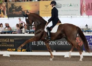 Heathe Blitz and Paragon will represent the U.S. at the Wellington Nations Cup CDIO3*(Photo: Phelpsphotos.com)