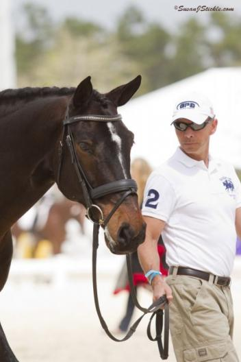 Steffen Peters and Ravel (Photo: Susan J Stickle)
