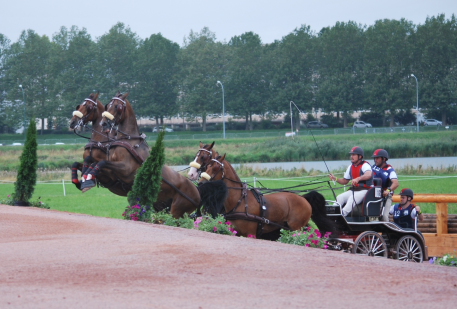 US Four-In-Hand Driver Chester Weber participated in the Alltech FEI World Equestrian Games 2014 in Normandy test event in 2013 winning the competition. (Photo courtesy of Madeleine Augustsson)