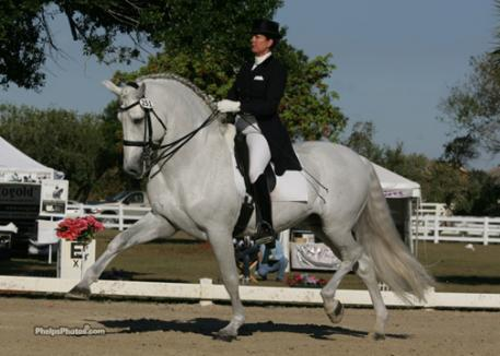 Pati Pierucci and Idilio in 2006 being shown at Grand Prix in competition with very promising scores in national classes in both Michigan and Florida.