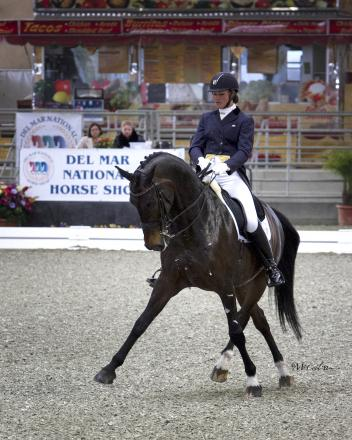Premier Equestrian is proud to support American riders like Adrienne Lyle. Photo courtesy of McCool Photos