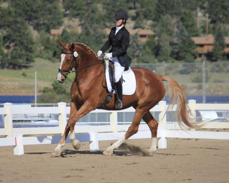 Yarmony Creek Sporthorse's French Tip and Maureen Sterling won the Rocky Mountain Dressage Society Reserve Championship at First Level.