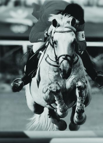 Equine Canada extends heartfelt condolences to the Hayes family on the passing of legendary show jumper Zucarlos - 1981-2013. File Photo - Hayes Co.