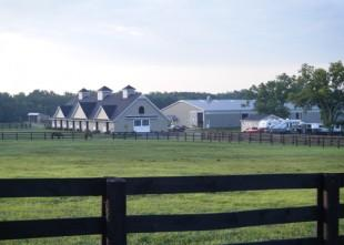 Reese's idyllic Maplecrest Farm in Georgetown, Kentucky is always busy with students, symposiums, and quality boarding and training for dressage. Photo: © Mary Phelps