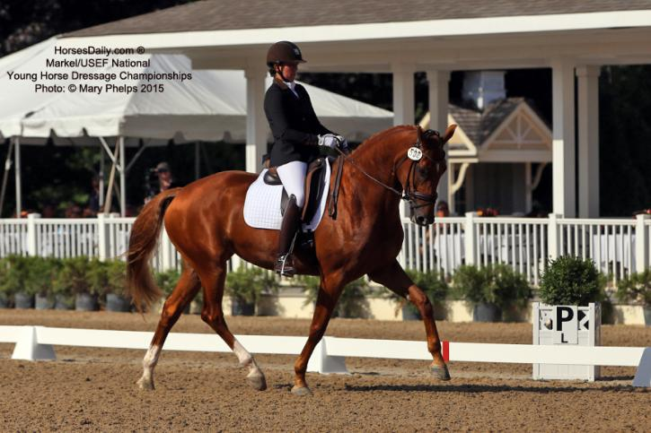 Brooke Voldbaek and Sonnenberg Farm's mare Generosa S,  (KWPN  Uphill-Zen Rosa, Farrington) 4-year-old Reserve Champion at the Markel/USEF National Young Horse Championships (Photo: Mary Phelps)