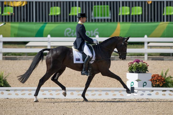 Chris Burton (AUS) and Santano II sit in second after day 1 of dressage (Photo: Dirk Caremans)