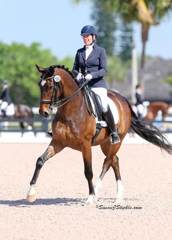 Daumier - 2007 Hanoverian Gelding ($100,000 and Up)