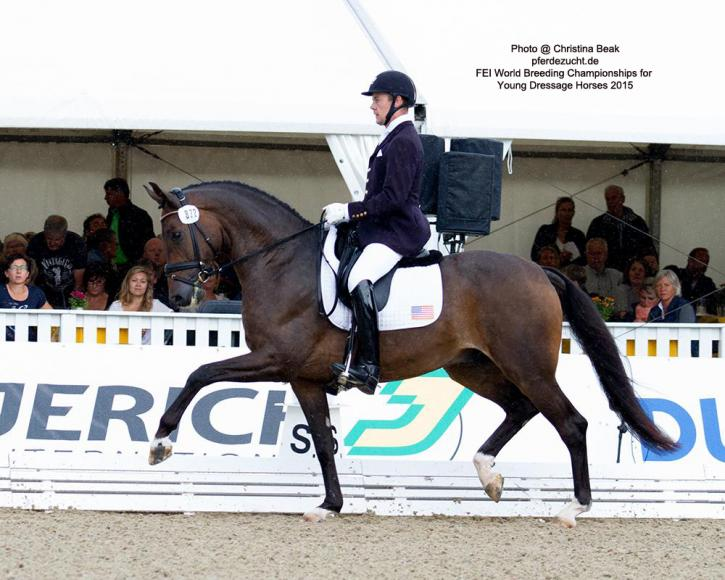 "Endel Ots (USA) and Samhitas<br />FEI World Breeding Championships<br />Dressage Young Horses 2015<br />Photo: <a href=""http://pferdezucht-beuke.de/"" target=""_blank"">Christina Beuke</a><br />"