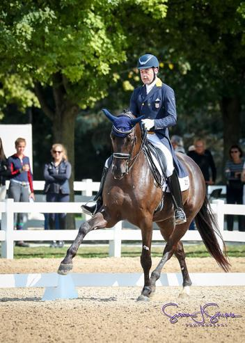Endel Ots and Lucky Strike round out the top three on day one of PSG competition (Photo: Susan J Stickle)