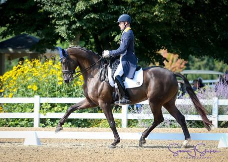 Endel Ots and Lucky Strike, Markel/USEF Developing Horse Prix St. Georges Dressage Reserve National Champion ©Susan J Stickle