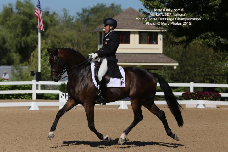 Cesar Parra and Fahion Designer OLD at the Markel/USEF Developing Horse Championships Photo: Mary Phelps
