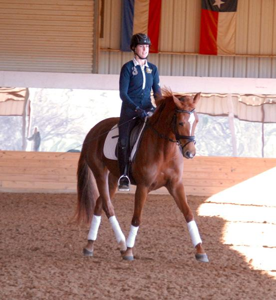 Fredrika - 2012 Trakehner Mare ($30,000 and Under)