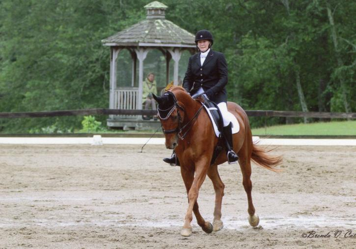 Karen Norton (CT) and her Oldenburg, Red Baron (Photo: Brenda Cataldo)