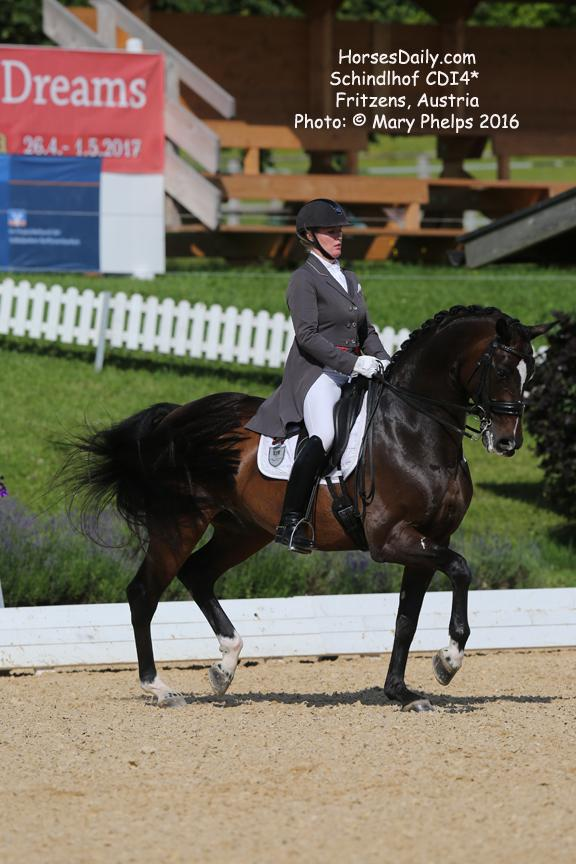 Karen Pavicic (CAN) and Don Daiquiri, Oldenburg gelding by Don Cardinale MV: Rubinstein I, owned by Karen Pavicic and Jayne Essig Photo: © Mary Phelps 2016