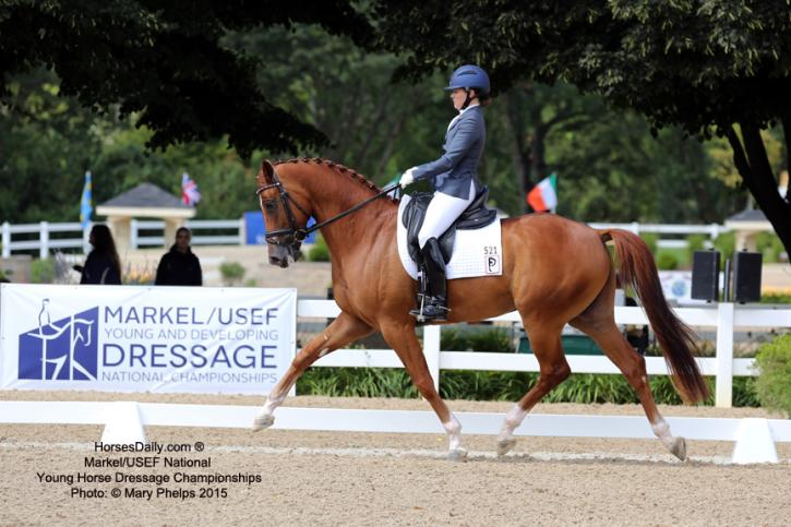 Katie Riley and Don Cesar at  the Markel/USEF Young Horse Championships 2015. Photo: Mary Phelps