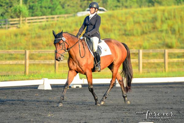 Miss Ruby Cooley - 2008 Holsteiner Mare ($50,000 - $75,000)