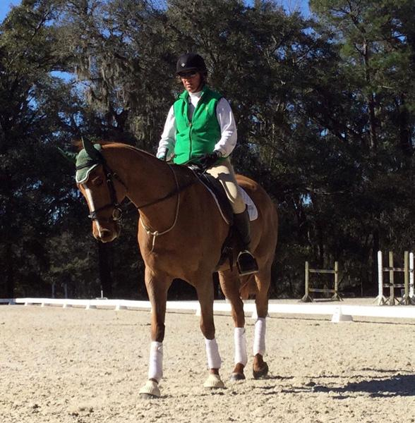 Ready For April - 2005 Thoroughbred Gelding ($30,000 and Under)
