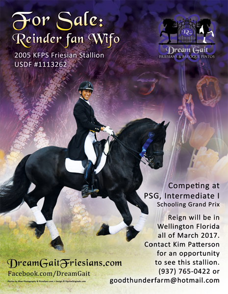 Reinder fan Wifo - 2005 KFPS Friesian Stallion ($100,000 and Up)