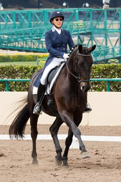 Rosenball - 2005 Oldenburg Gelding ($50,000 - $75,000)