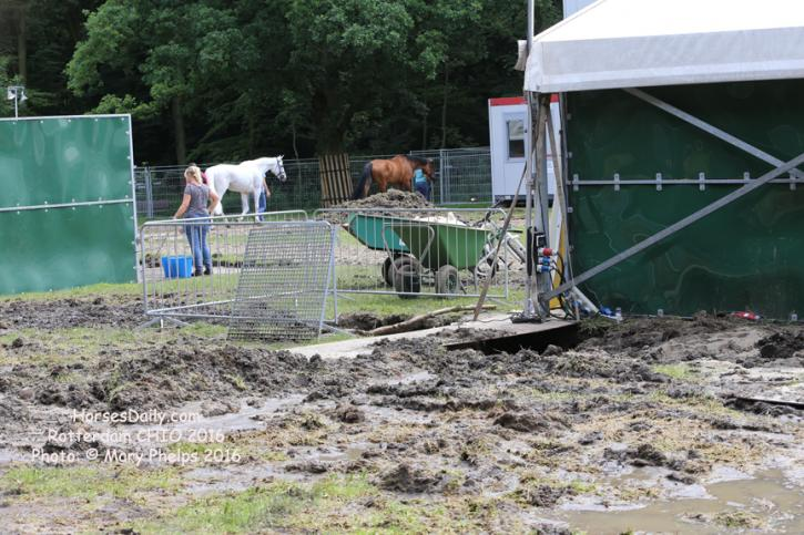 Horse shows are so glamorous