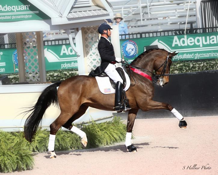 Steffen Peters and Rosamunde (Photo: Sara Hellner)